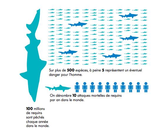 Les Requins de la Colère2